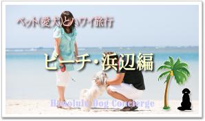 ペット(愛犬)とハワイへ::ビーチで愛犬と楽しむ