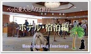 ハワイでペットと一緒に泊まれる宿・ホテル