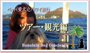 ペット(愛犬)とハワイへ::ツアー・観光について